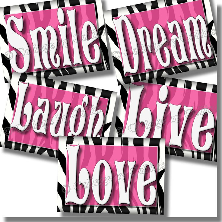 HOT PINK Zebra Print SMILE DREAM LIVE LOVE LAUGH Quote Art Girls Room Wall Decor