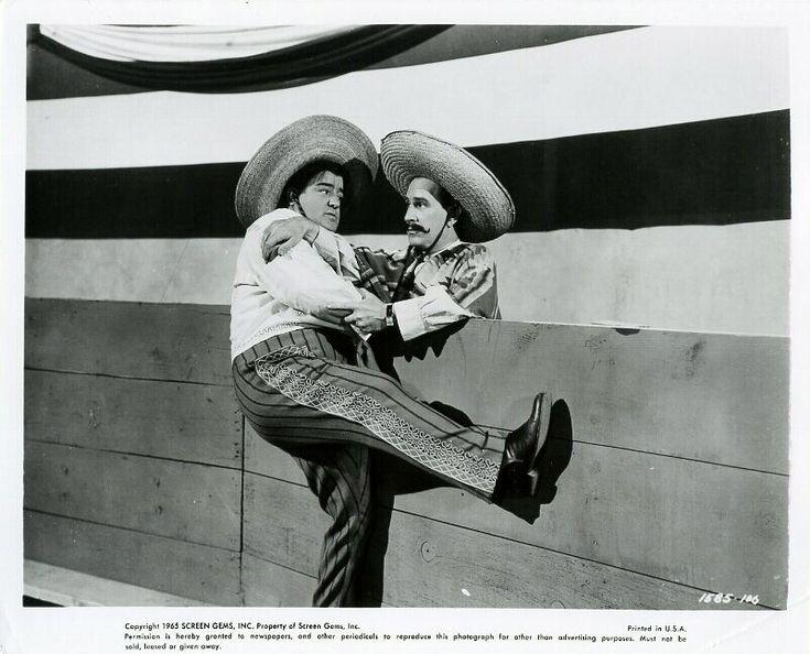 MEXICAN HAYRIDE | Abbott & Costello