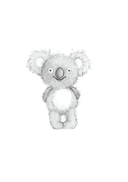 gail yerrill koala sketch  animal illustrations pinterest koalas gail ogrady