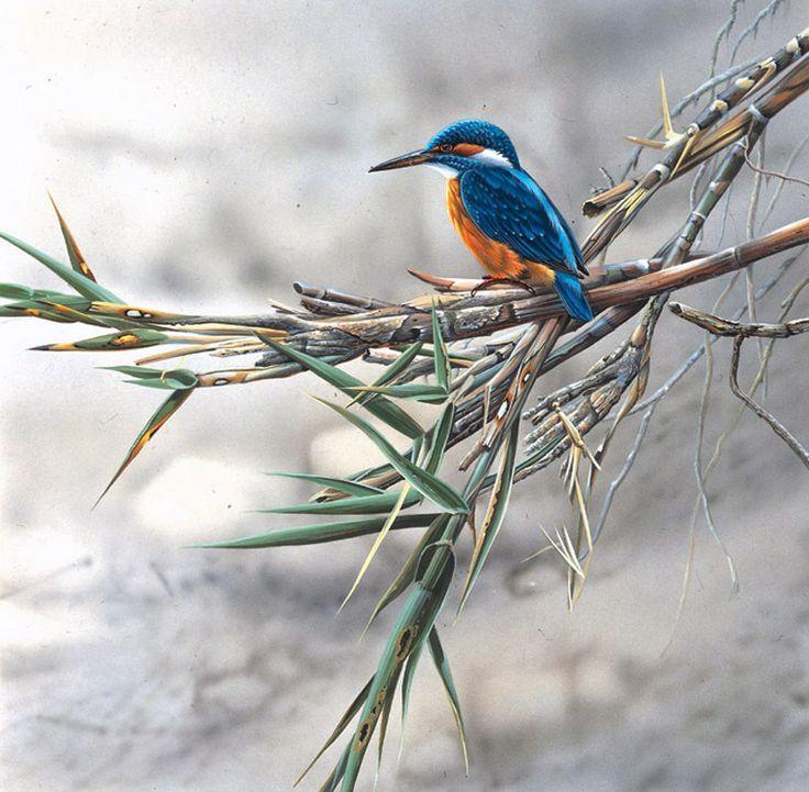 Artist Jan Weenink. Lumea păsărilor .. Discuție pe LiveInternet - Serviciul Rusă Online Zilnice