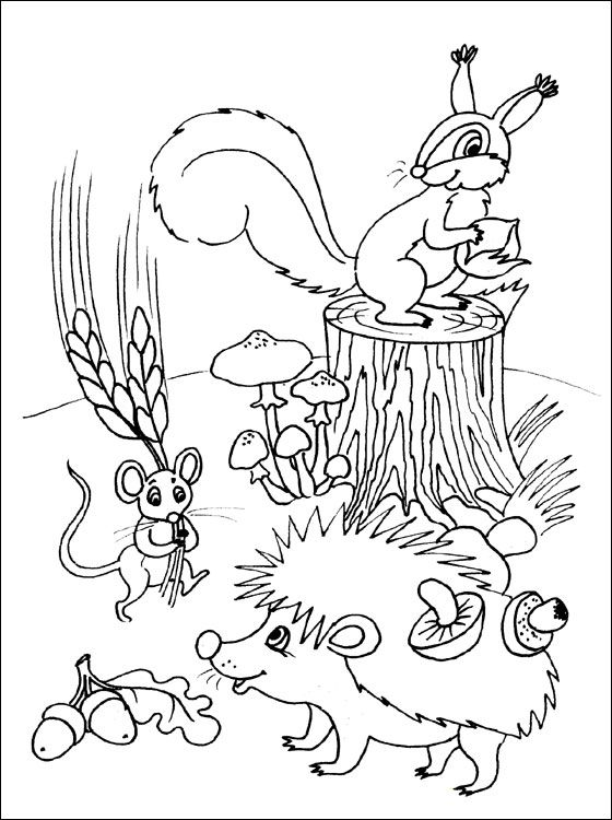 Coloring page with animals in the autumn | Coloring pages