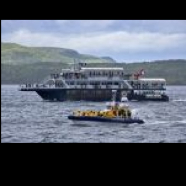 Whale watching in Quebec which we have done and loved!!