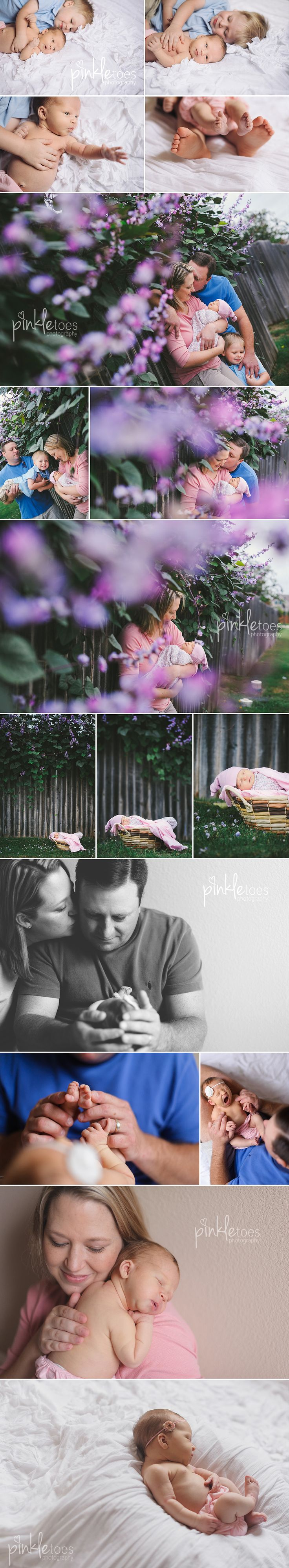 lifestyle family newborn   © michele anderson, pinkle toes photography