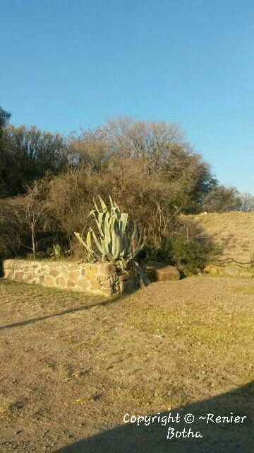 Landscape ...... captured by Renier Botha..... on farm outside Koppies