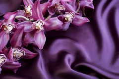 Violet Silk and Orchids Stock Image
