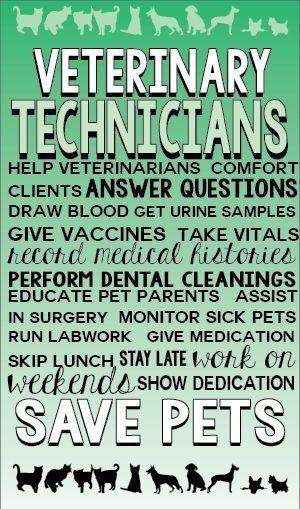 Veterinary Technicians