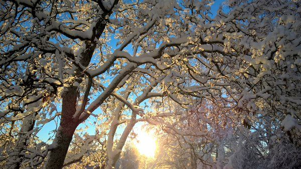 Winter wonderland in Tampere 24.11.2015