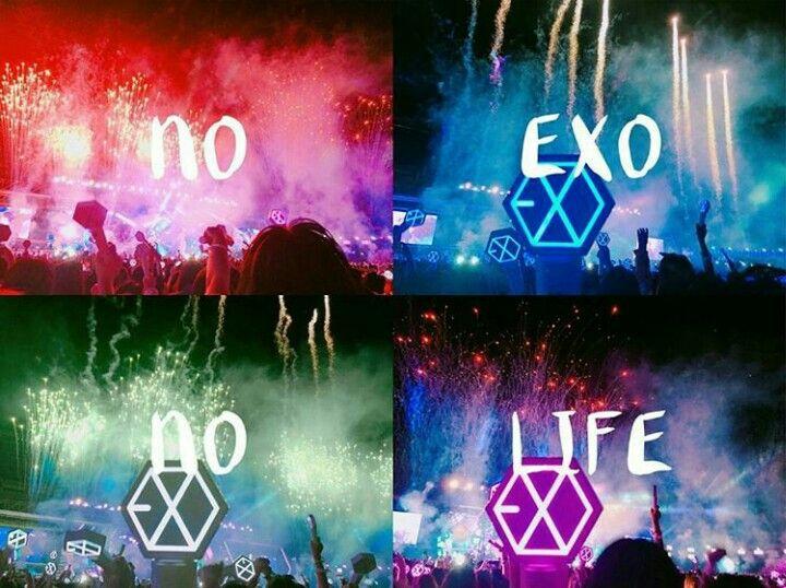 """""""No EXO, No LIFE!""""- EXO-L's EXO'rDIUM DOT in Seoul"""