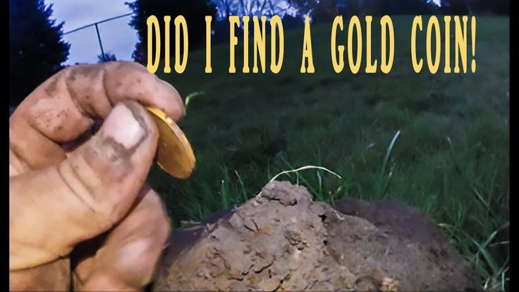 Did I FIND a GOLD COIN