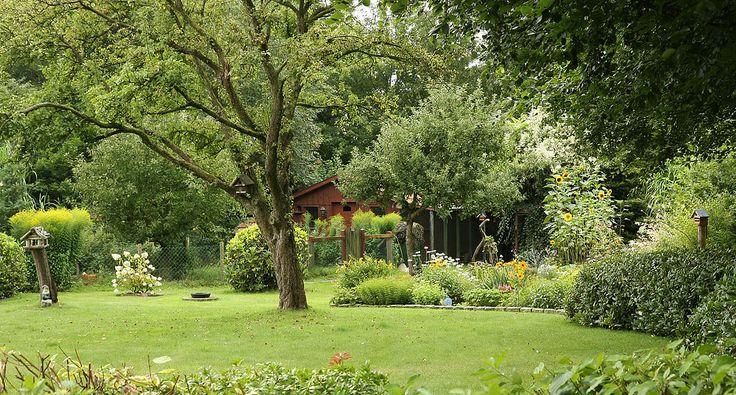 Naturgarten mit Wildhecke
