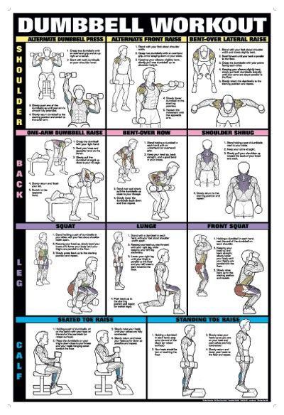 Shoulder, Back, Leg, Calf Bumbbell Workout! Training - PROJECT NEXT - Bodybuilding & Fitness Motivation + Inspiration
