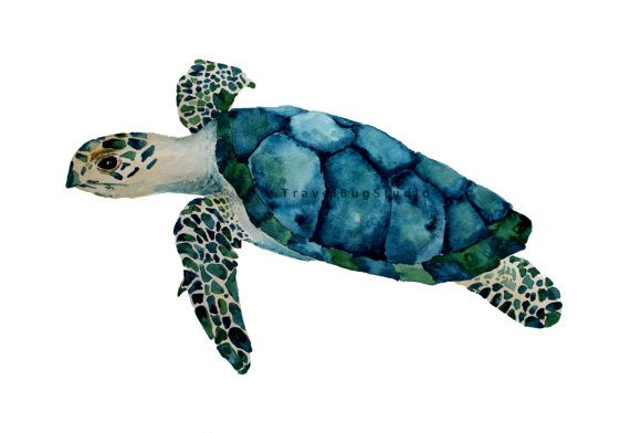 Meeresschildkröte-Kunst nautische Wandkunst Schildkröte