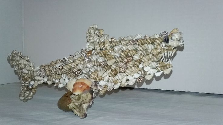 Seashell Shark  ((  Sold ))  custom orders are available