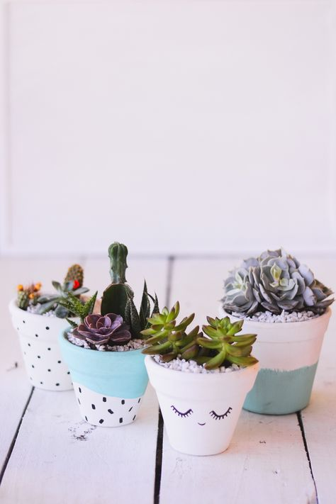 DIY: Vaso de barro decorado para suculentas | O Mundo de Jess