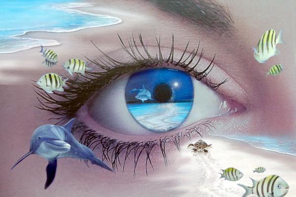 # EYES - LIFE UNDER THE OCEAN