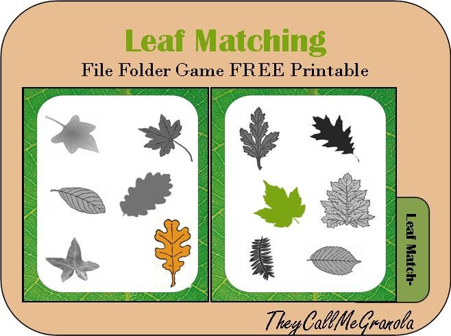 Leaf Matching File Folder Game . TheyCallMeGranola . FREE Printable