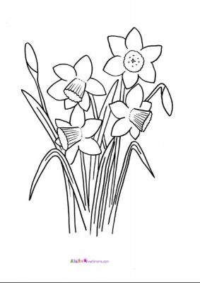 st david\'s day coloring pages | 17 Best images about Welsh craft ideas on Pinterest ...