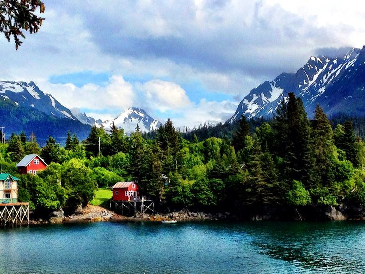 Halibut Cove Alaska Buildings And Houses On Stilts And Get There By Boat Just Across