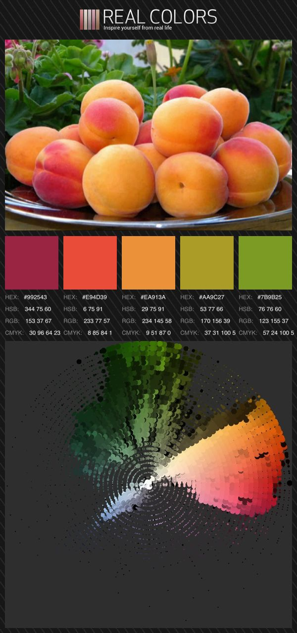 1000 images about colors and palettes on pinterest - Exterior house color scheme generator ...