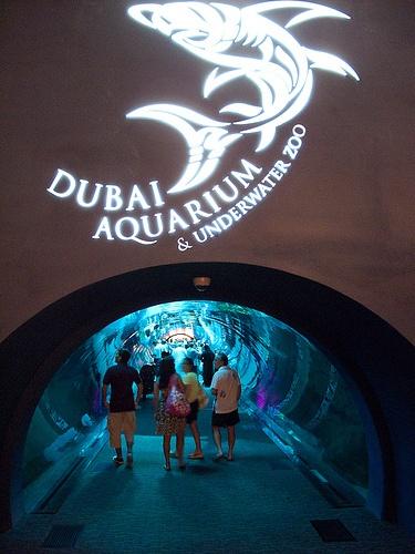 Dubai Mall Aquarium. www.trabajarendubai.com | #trabajarendubai