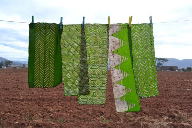 Batik hung out in the Swaziland sunshine ...