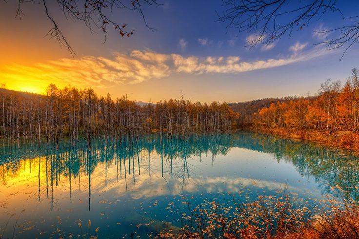 少し早めの秋を…夜明け:晩秋の青い池 東京カメラ部2015ヒカリエ写真展のまとめサイトがリリースされたので、出品した作品をWeb初投稿します。ヒカリエでは2階に展示されていたので見ていない方も多いと思います。また、これはCP+2015でニコンさんのブースにも展示していただいた作品です。晩秋の北海道青い池の夜明けを露出を変えた7枚のカットからHDRで作成しました。普通に撮っただけでは、逆光に潰れてしまうハイライトや暗部の色を再現した作品です。