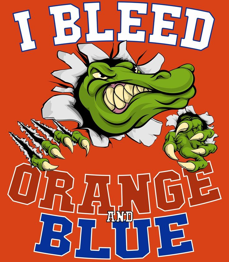 17 Best Images About Florida Gators On Pinterest Fleece