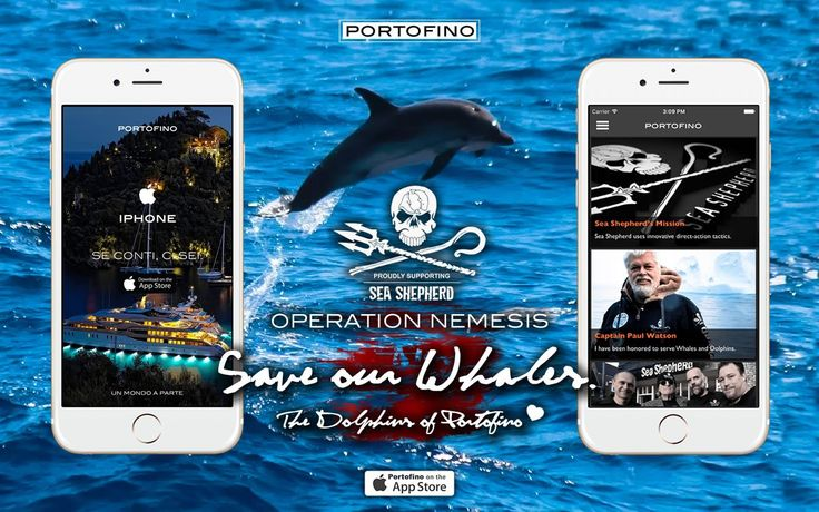 PORTOFINO SUPPORTS «OPERATION NEMESIS 2017». SHEA SHEPHERD: SAVE OUR WHALES! Sea Shepherd Italia  DONATE NOW:  https://www.seashepherdglobal.org/support-us/donate.html