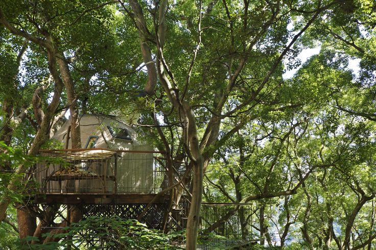 Birds Nest Atami