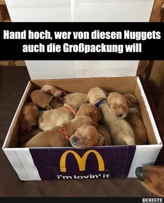 Hand hoch, wer von diesen Nuggets auch die Großpackung will.. | Lustige Bilder, Sprüche, Witze, echt lustig