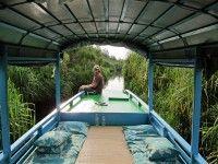Slapen op een klotok in de jungle door Nationaal ParkTanjung Puting. #Kalimantan #Borneo #Indonesië #reizen-
