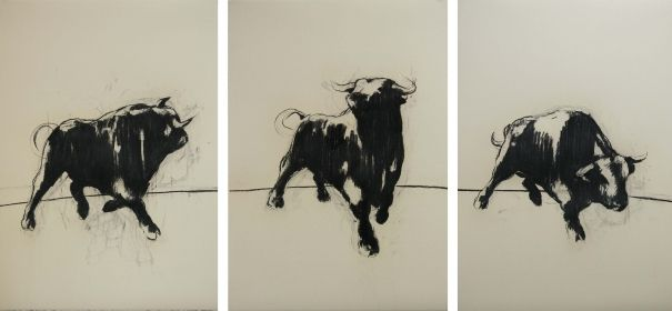 Bulls I-III by Zil Hoque
