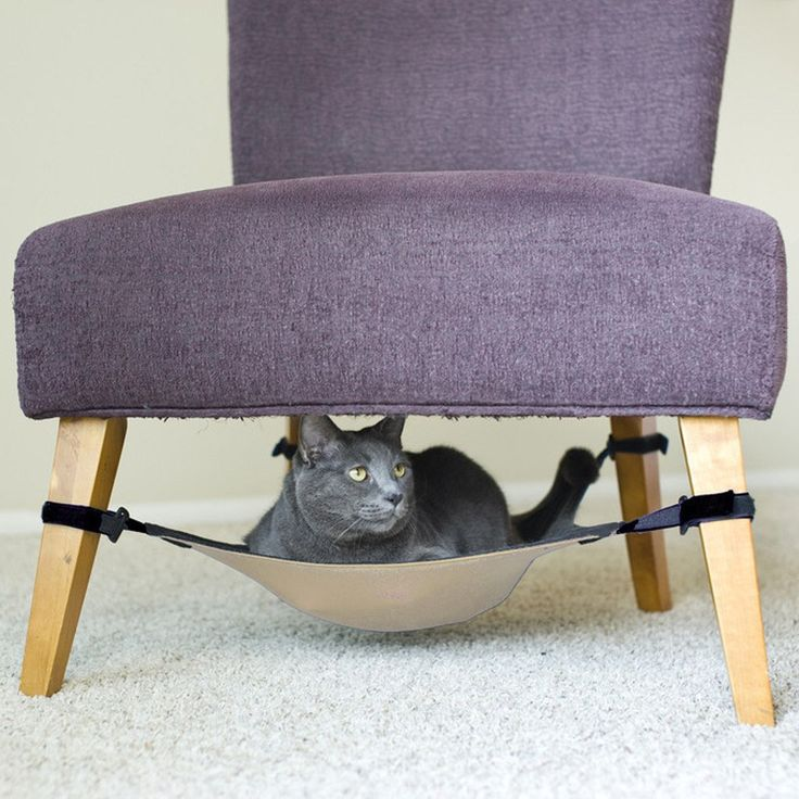 Under-Chair Cat Hammock