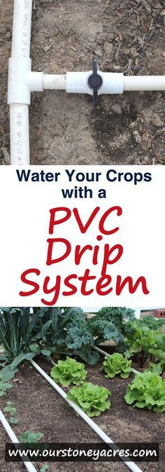 PVC Drip Irrigation is an inexpensive and easy to build method for watering your backyard garden. After adding a PVC drip irrigation system to your garden you can expect stronger vegetable plants, fewer weeds and a lower water bill!
