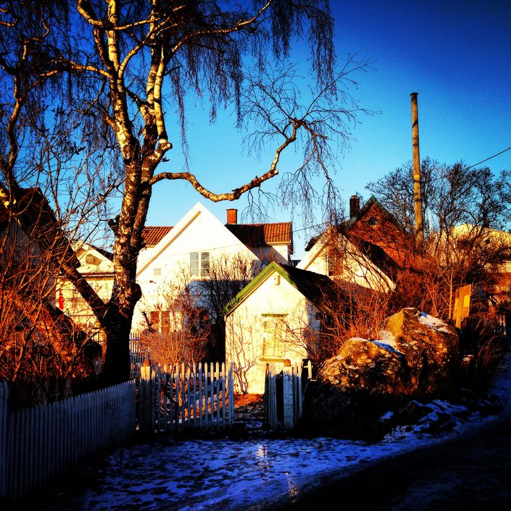 Badehusgaten i Drøbak, desember #Drøbak #MyTown #Christmas  Marianne M