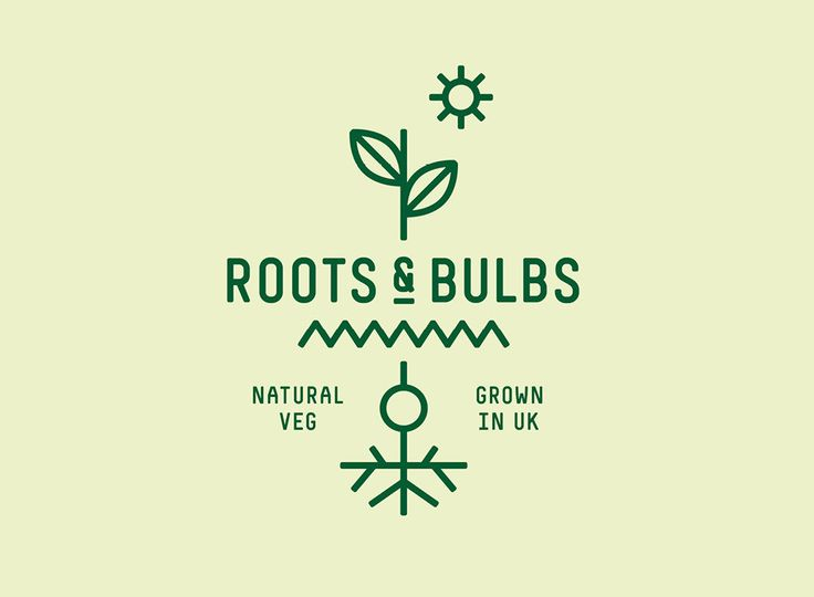 Roots & Bulbs + Construct