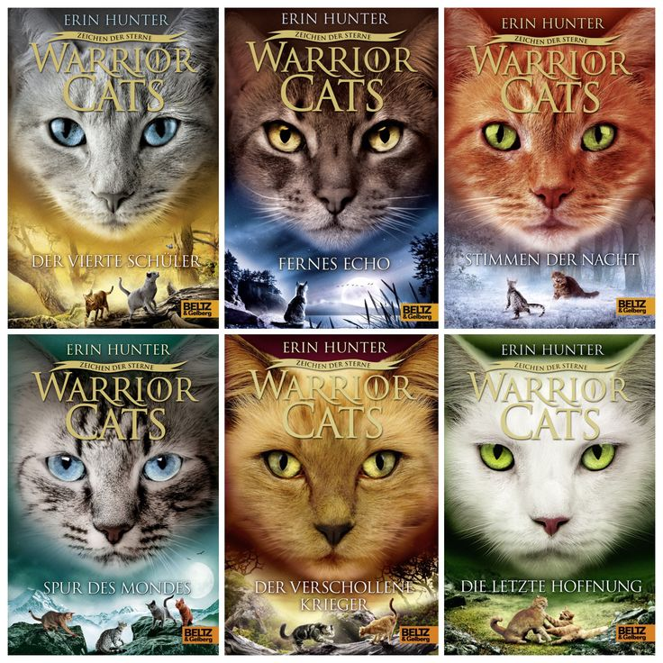 Warriors A Vision Of Shadows Online: 11 Best For Makenna Images On Pinterest