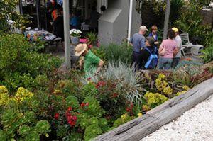 Waiheke Garden Safari