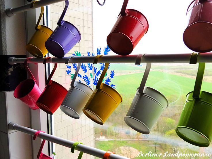 Platzsparend: Teleskopstange im Fensterrahmen für Töpfe  Space-saving: Tension Rods in the Window for pots