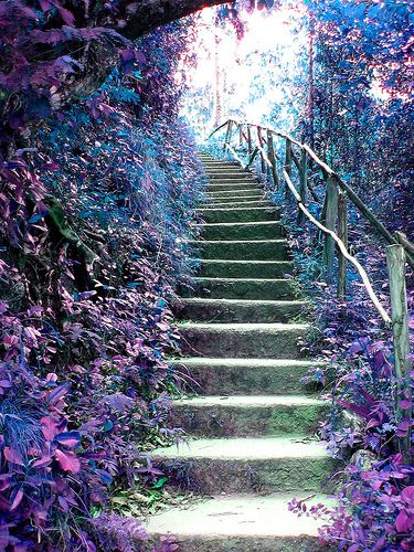 Steps to Fairyland