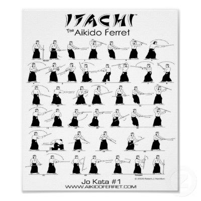 Itachi Jo Kata #1 Poster from http://www.zazzle.com/ferret+gifts