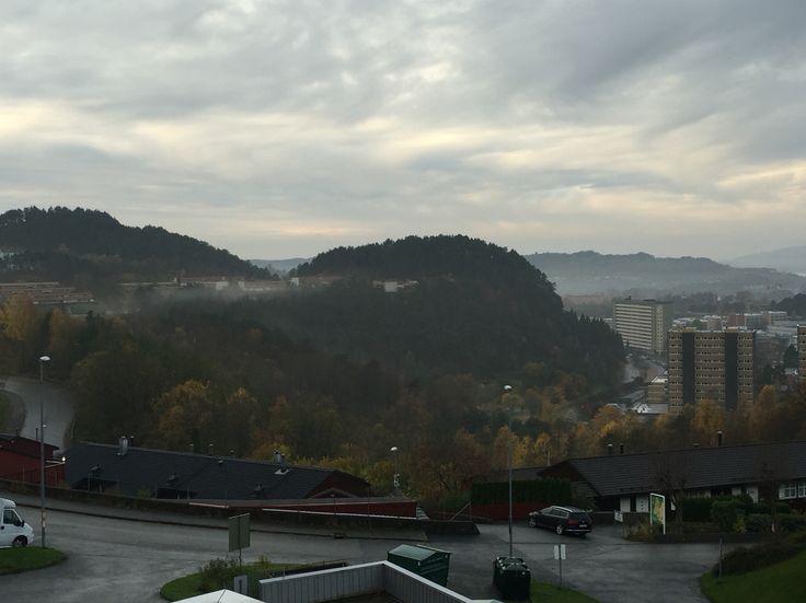 Cold høst morning IN Fyllingsdalen. Bergen, Norway.