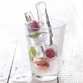 Aromatische ijsblokjes, lekker in water en frisdrank