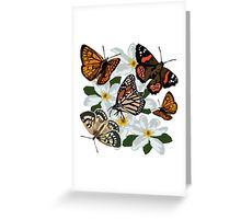 http://www.redbubble.com/people/irajane/works/17831786-new-zealand-butterflies?ref=recent-owner