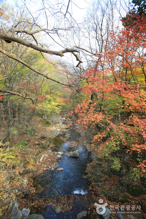 Odaesan National Park (오대산국립공원), Gangwondo's Korea100 Category : Nature, Natural Attractions, A national park Tour Information :  Odaesan National Park (오대산국립공원) was designated as a national park in 1975. Its name was derived from the the following 5 plateaus: Manwoldae, Jangryeo..