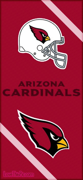 Arizona Cardinals nfl arizona cardinals arizona cardinals nfl football sports football teams