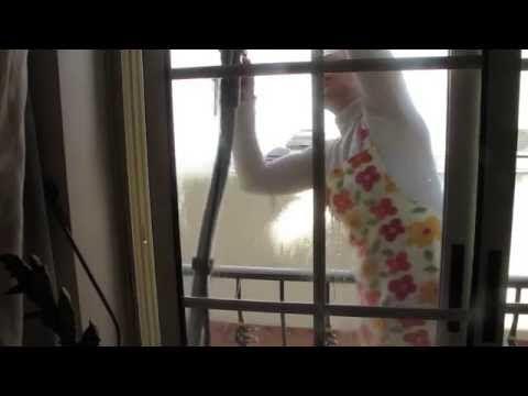 Luisa Alexandra: Limpeza de Vidros • UNICO da Polti [VÍDEO]