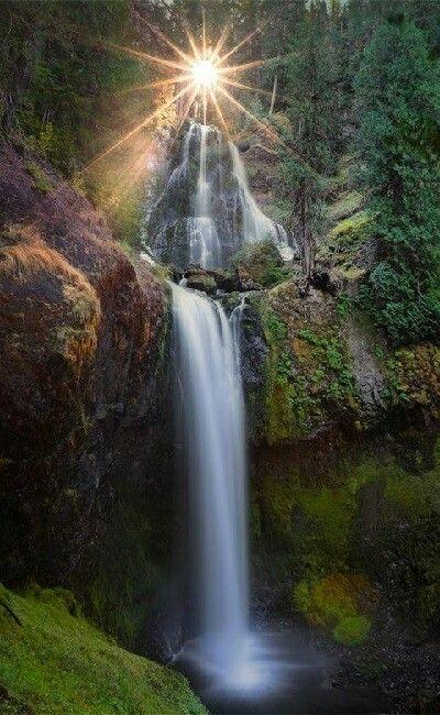 Butte creek falls Oregon USA