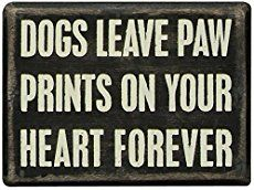 Read and remember these beautiful dog sayings which express the way we all feel about our dogs.