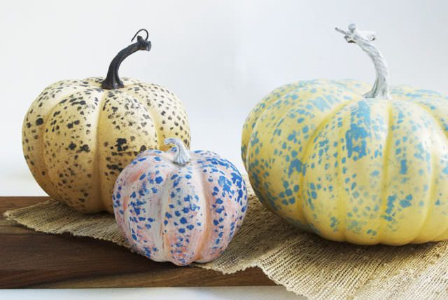 source: Creme De La Craft 7. Mesh Bag Splotchy spots on your skin? Gross. Splotchy spots on your pumpkins? Artistic! With a mesh bag and some cotton balls, you can give your pumpkins a cool spotted look that will give your porch (or anywhere else you display them) a rustic vibe. I love the ideaContinue Reading...